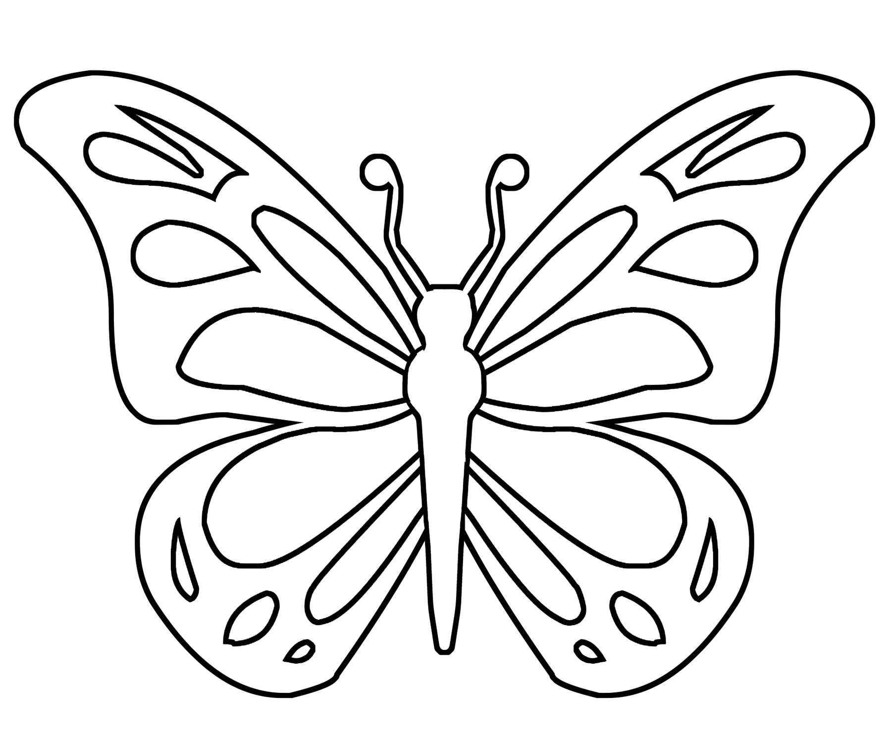 simple butterfly for coloring