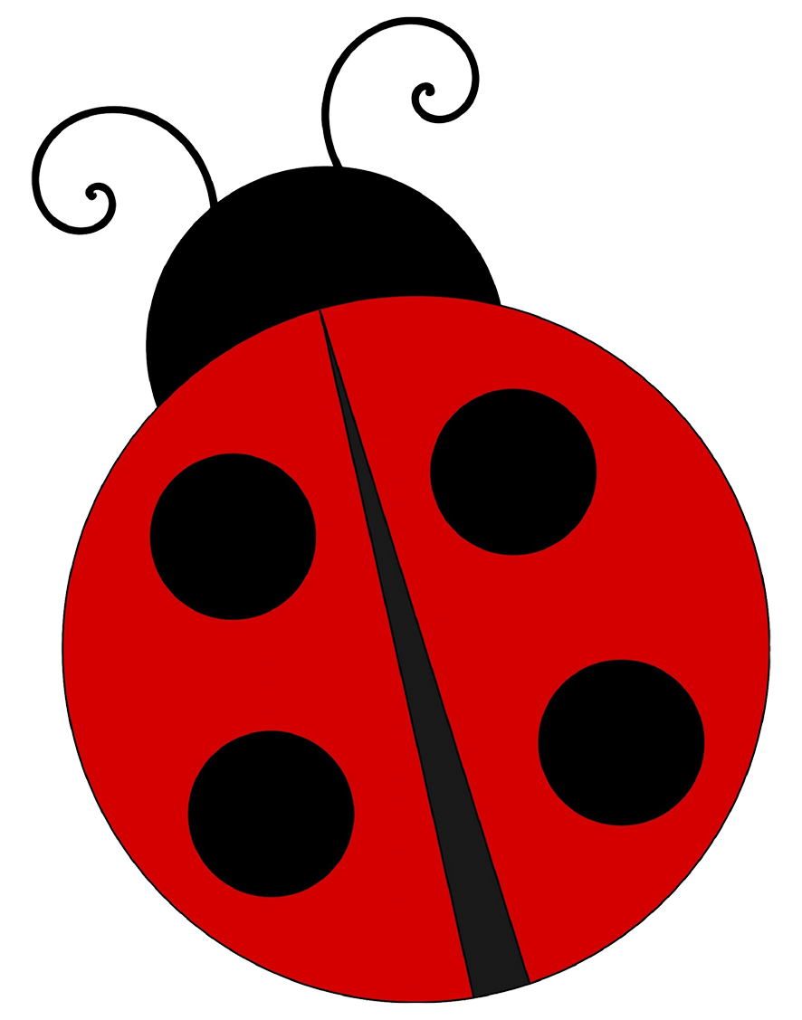 simple ladybug drawing