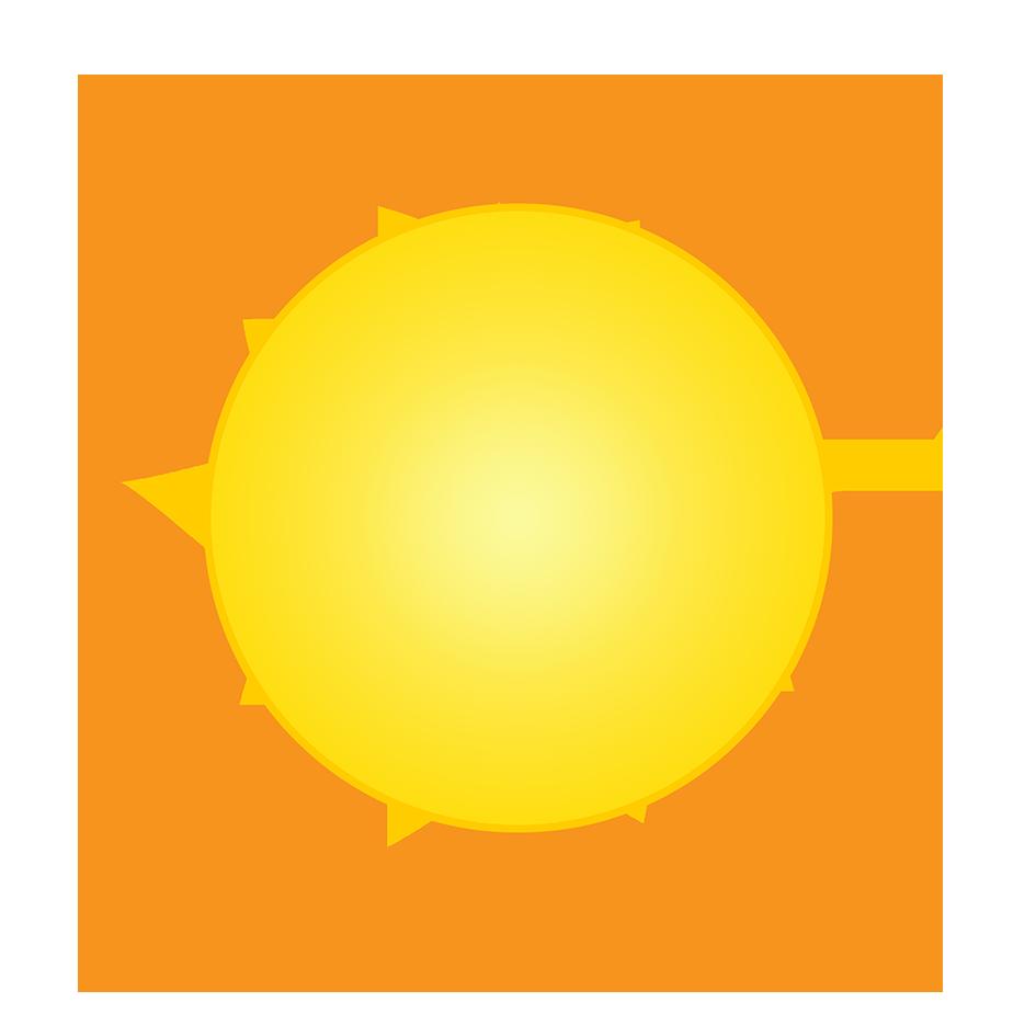 sun as sun flower logo