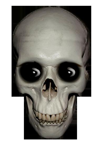 skull clip art with eyes