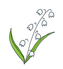 spring clipart lily of the valley