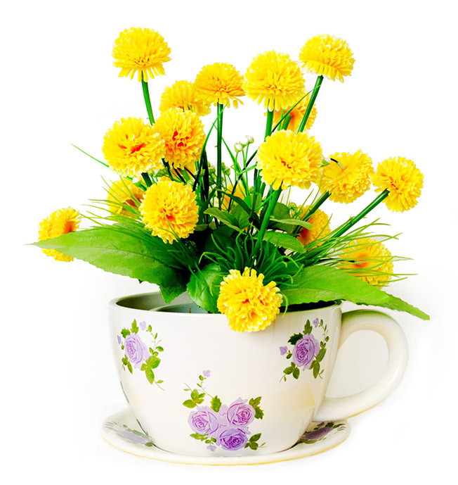 spring flowers in tea cup