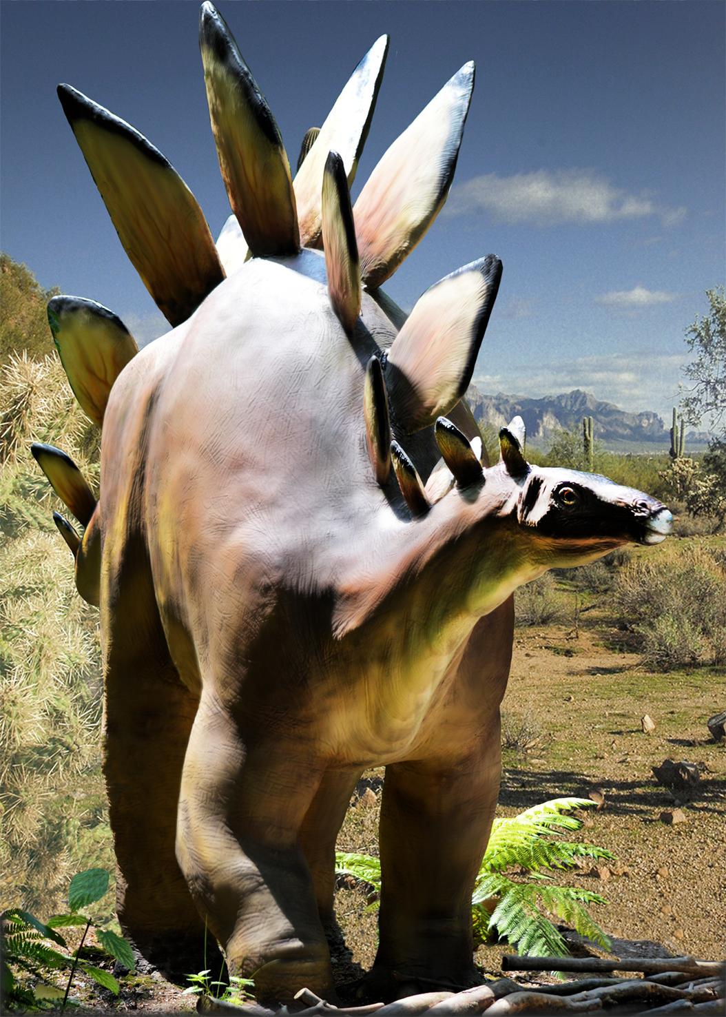 picture of stegosaurus dinosaur