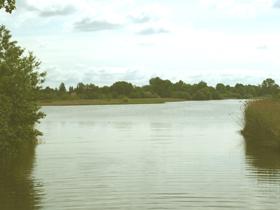 my favorite season summer landscape water
