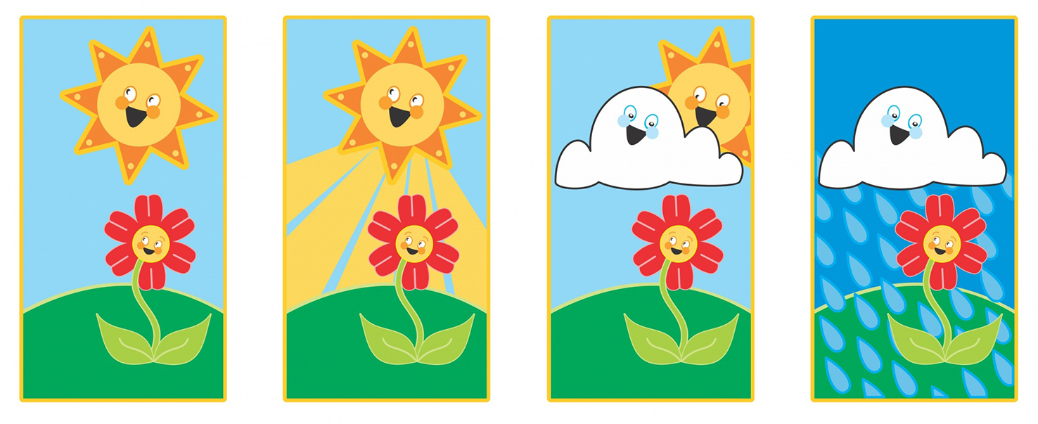 sun and flower and rain