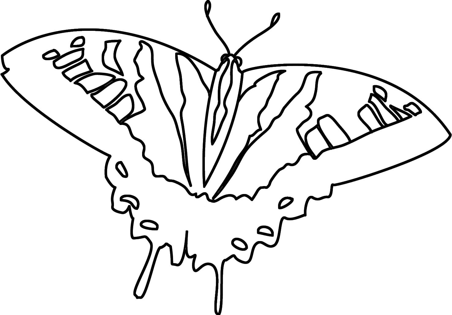 coloring page swallowtail