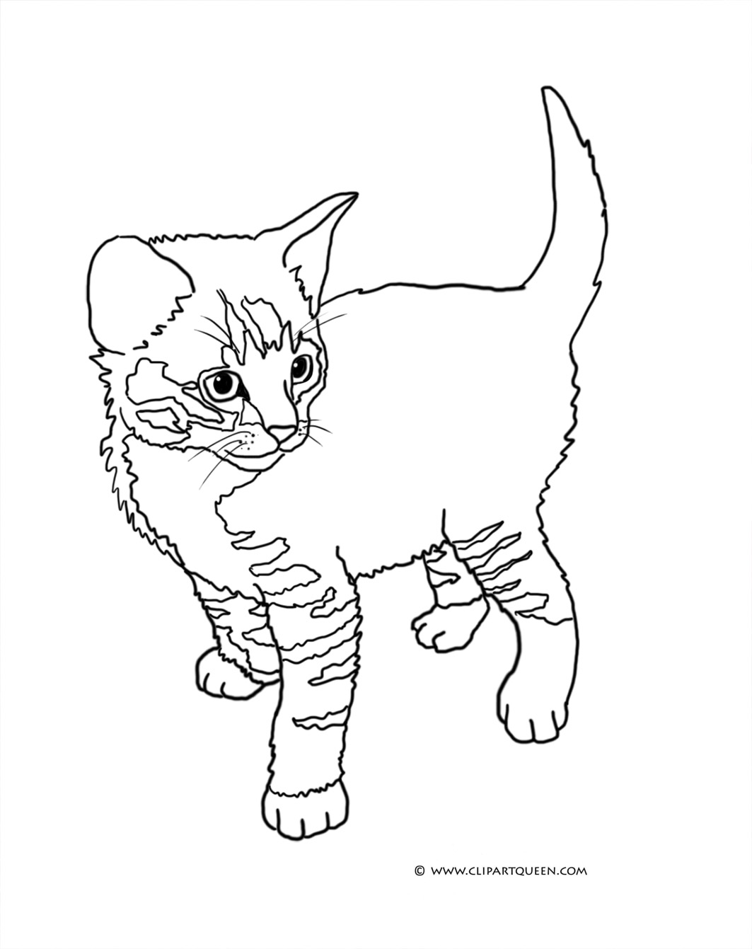 Coloring Sheet Two Kittens Playing Cute Little Kitten Standing