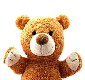 upper part of happy tedd bear