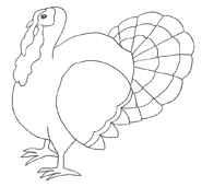 turkey pictures black white