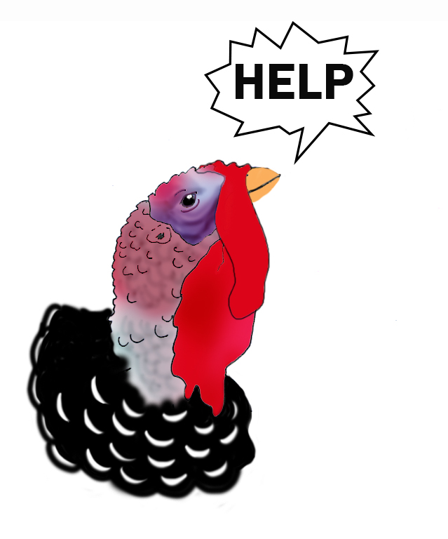 turkey head calling for help