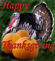 thanksgiving clip art pumpkins turkey bird