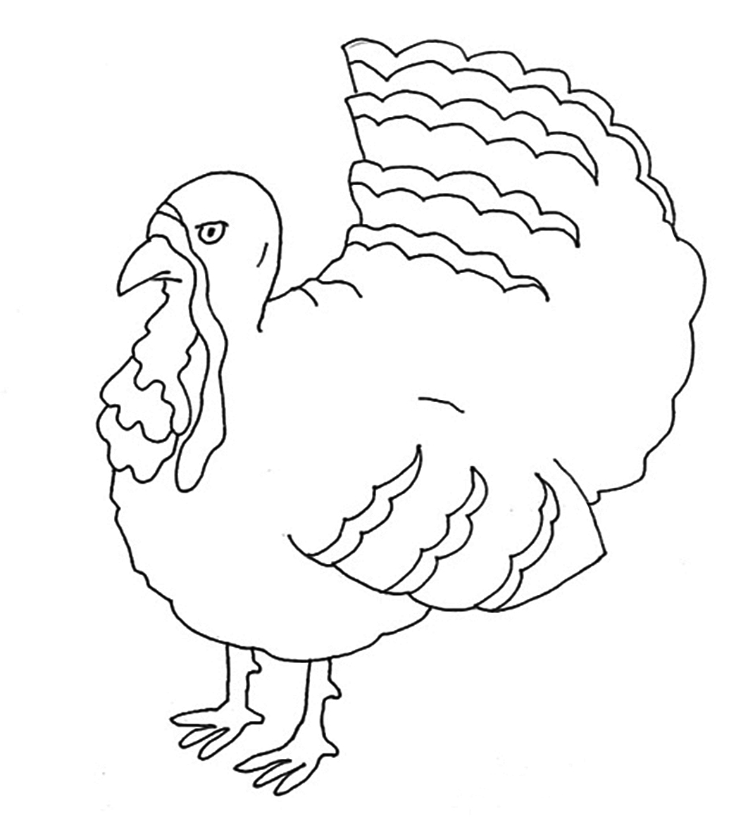 turkey bird thanksgiving coloring pages