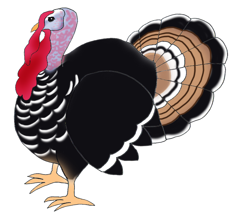 Thanksgiving clip art turkey bird