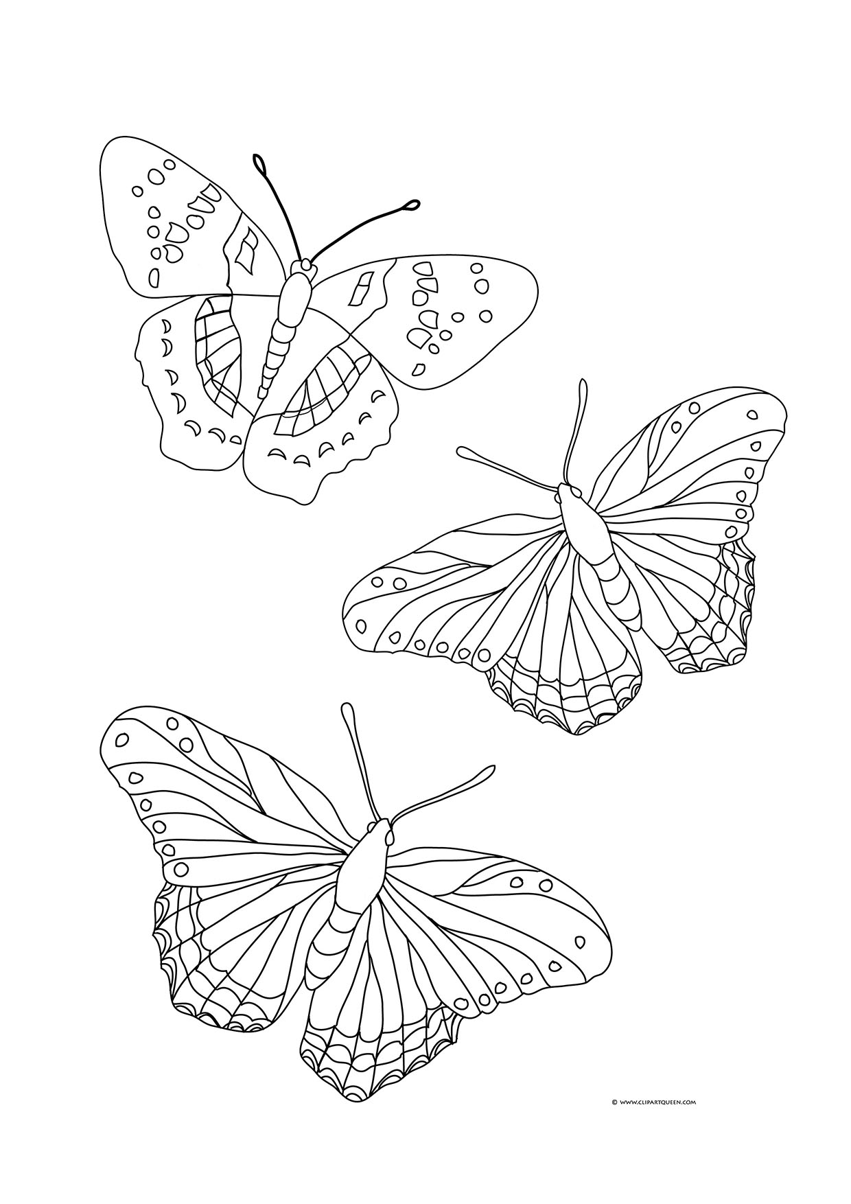 Butterfly coloring page with three butterflies