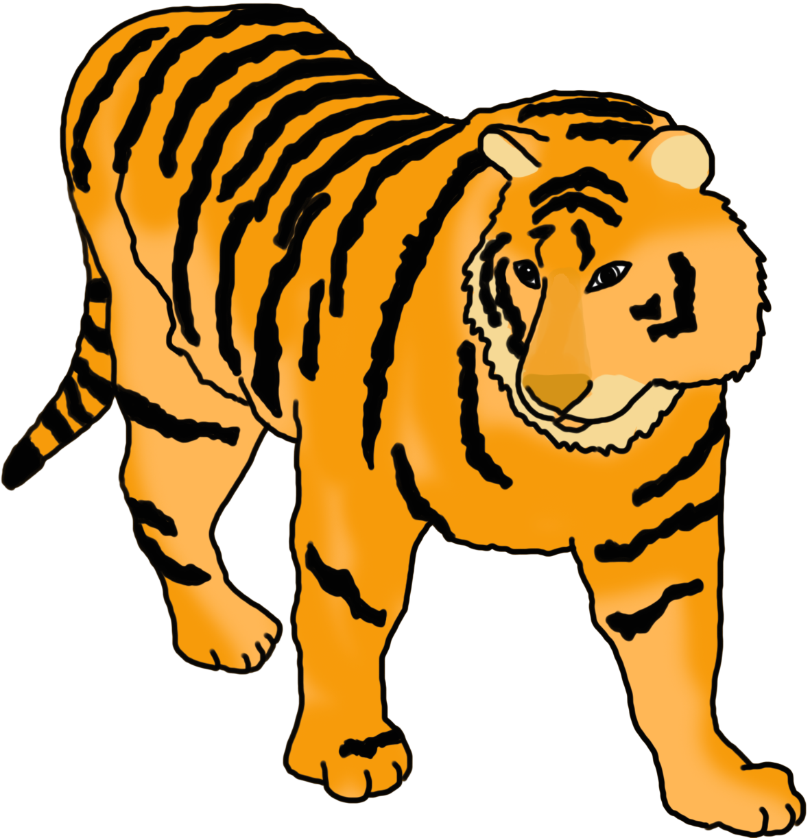 tiger with stripes colored