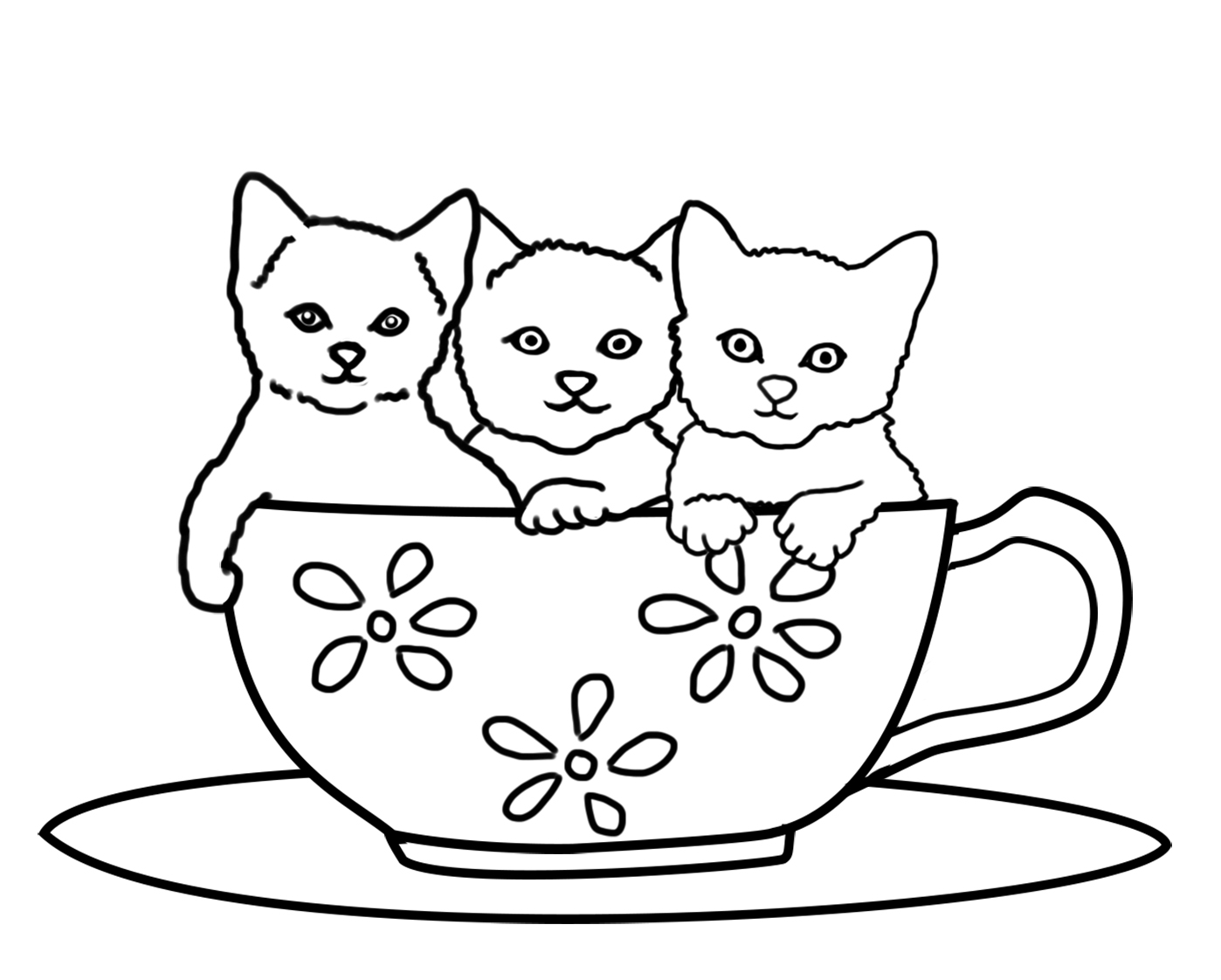three kittens in a cup