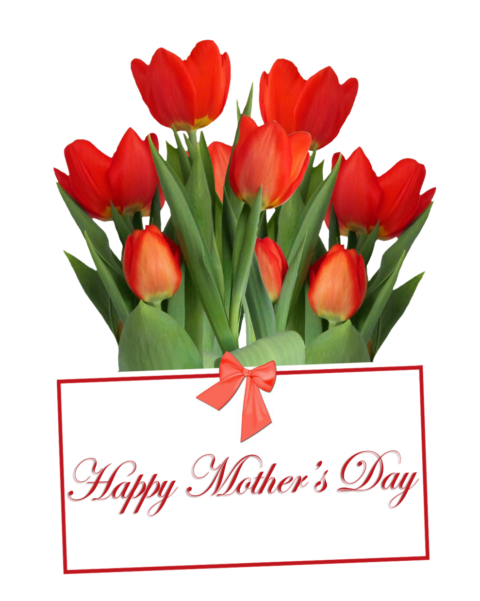 tulips with Mother's Day greeting card