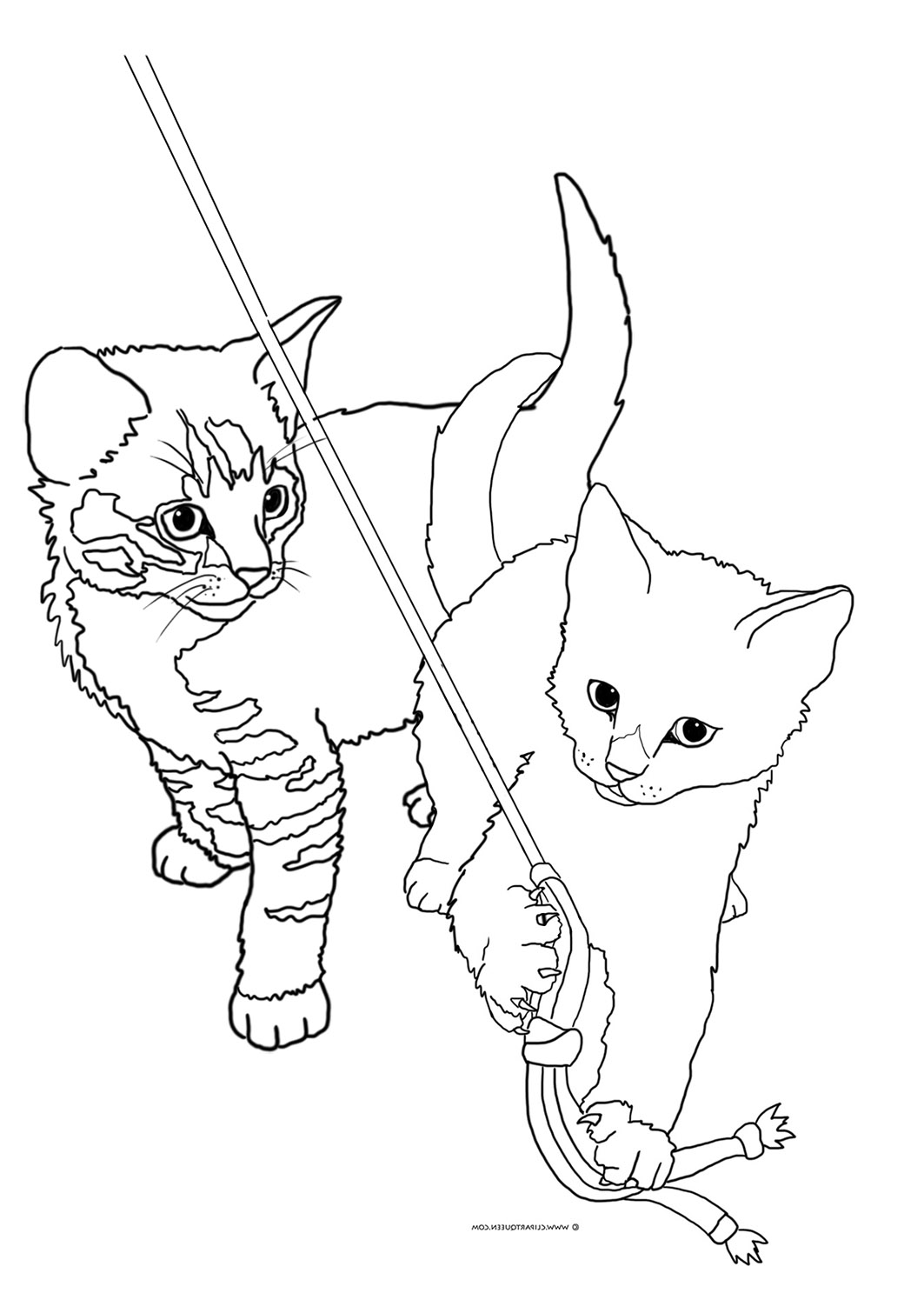 two kittens playing coloring sheet