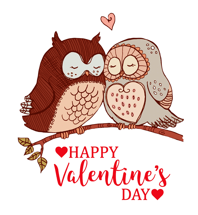 Happy Valentines day greeting owls in love