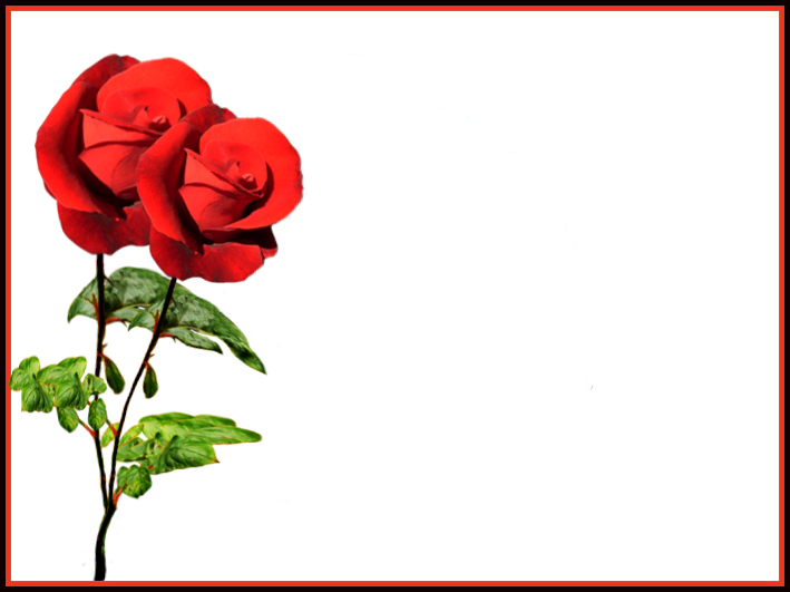 Valentine template with red roses