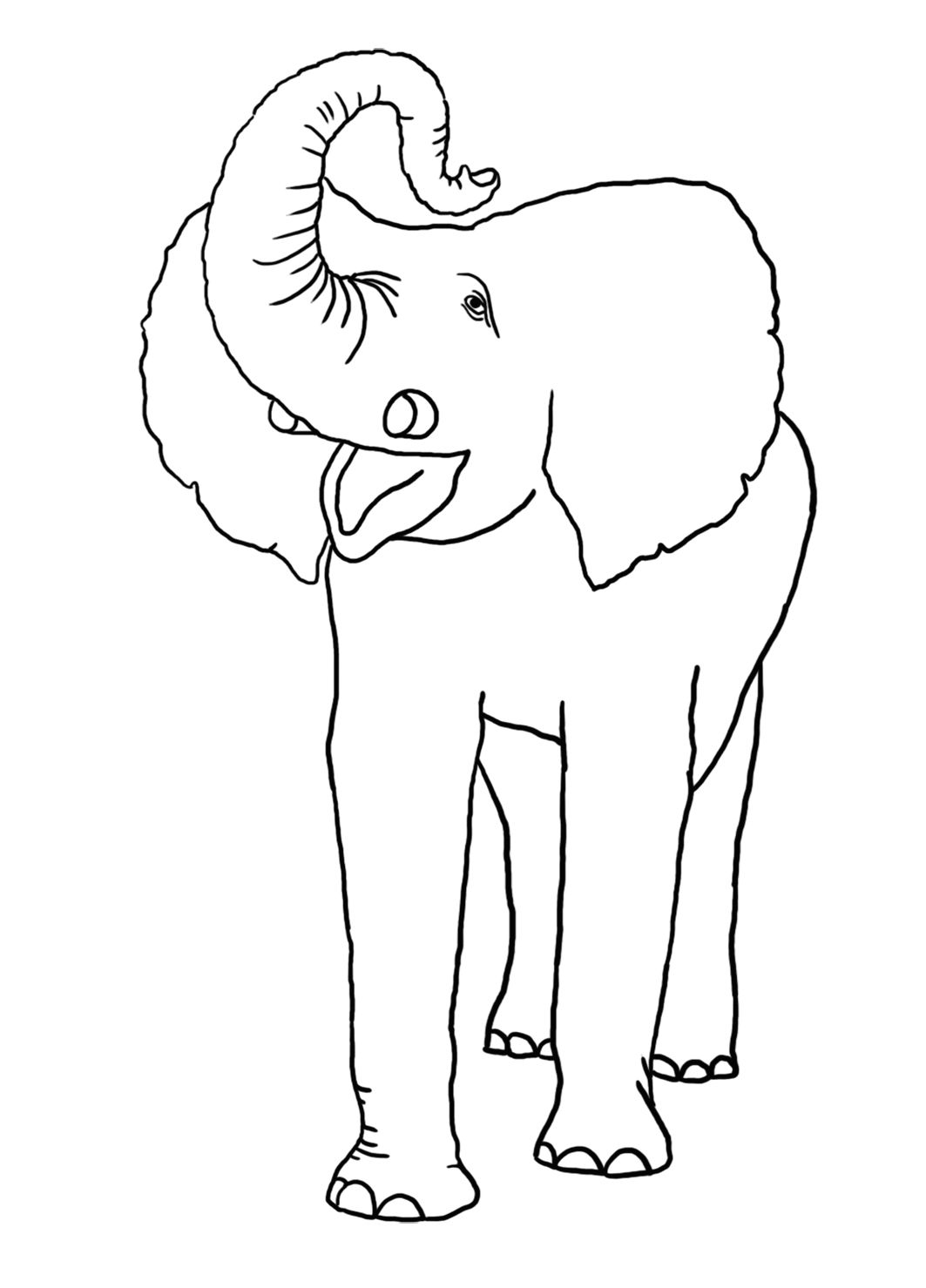 vintage drawing circus elephant for coloring