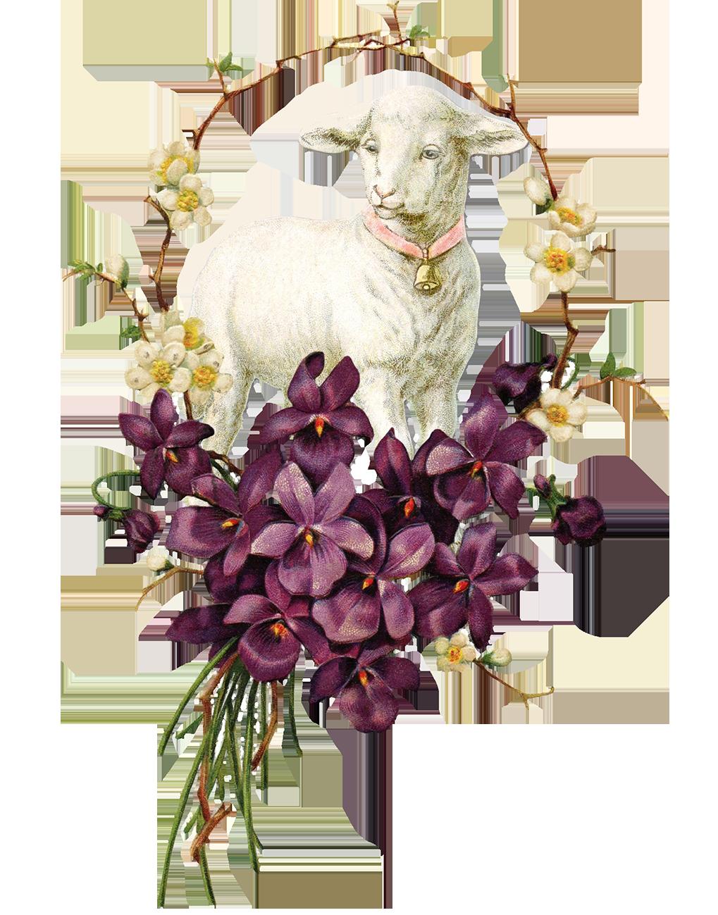 vintage Easter clipart sheep violets