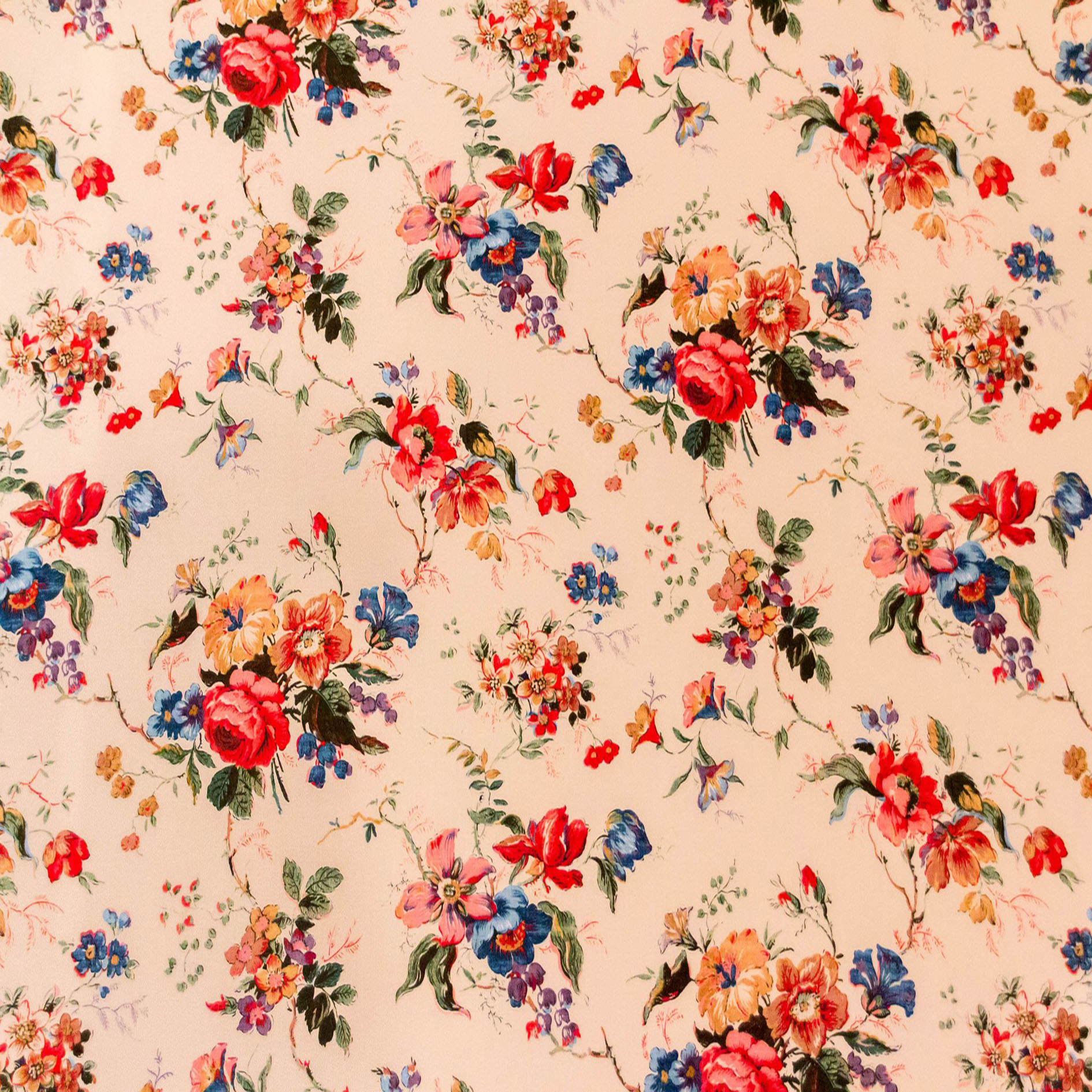 Rosa floral vintage background