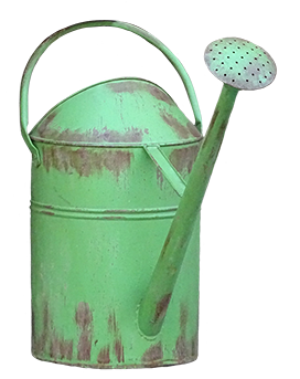 old green water can clipart
