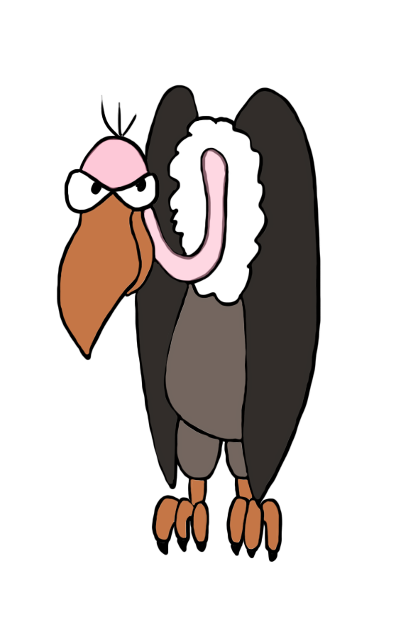 vulture drawing in color