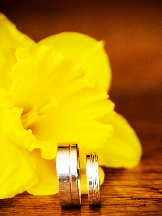 wedding rings and daffodil