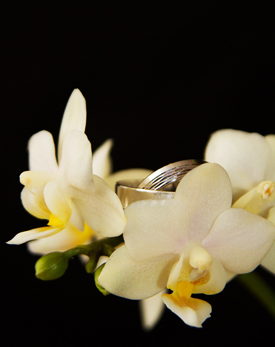 wedding rings and white orchids