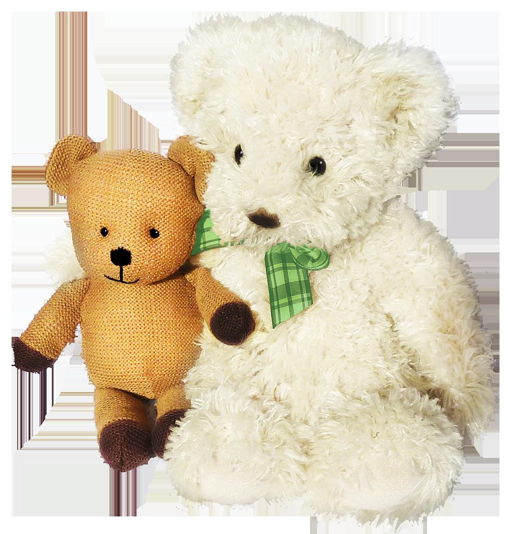 Two Teddy bear friends
