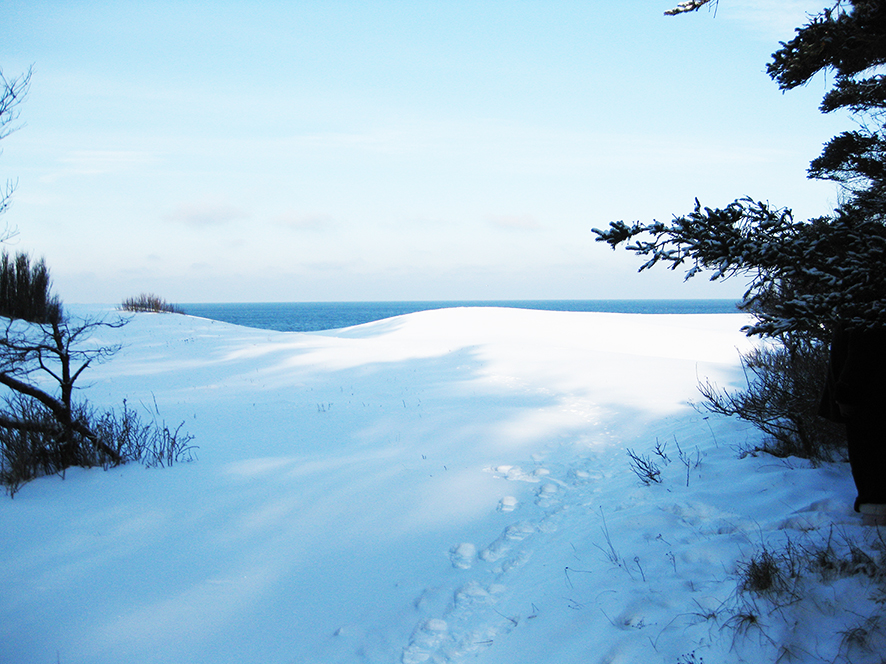 winter pictures landscape snow sea