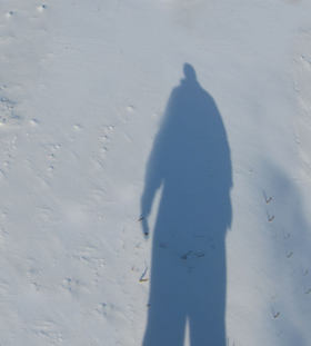 winter pictures shadow on snow
