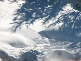 winter pictures snow landscape