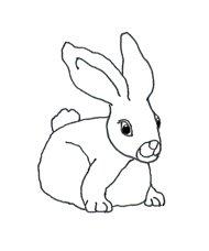 sketch cute easter bunny