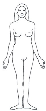 Human Body Diagram - Medical Clipart