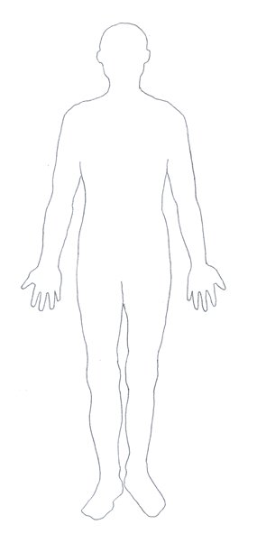 human body diagram contour