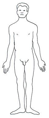 human body diagram male man black white