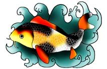 black red koi fish in waves