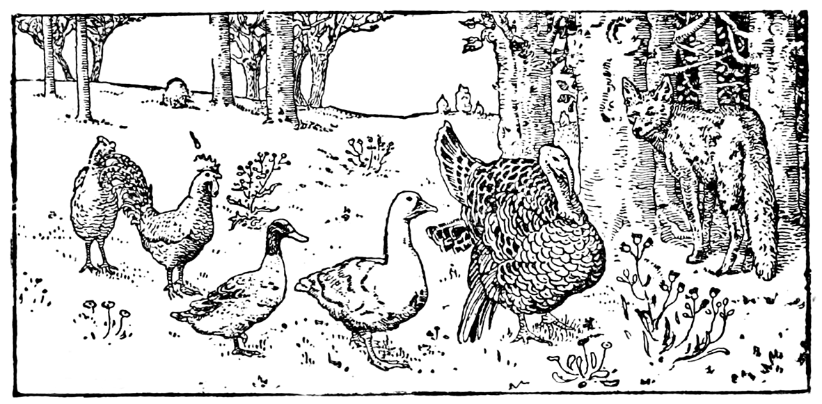 Old drawing of fox and turkey