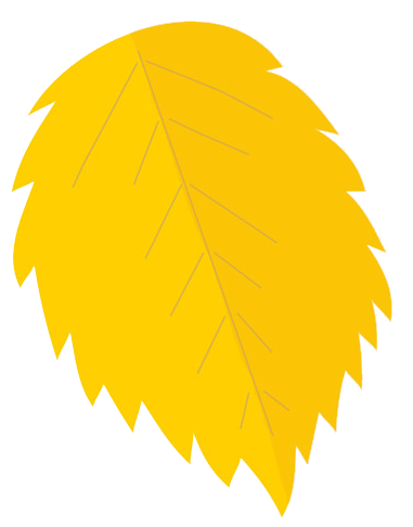 Fall Leaves Clip Art on Yellow Page Borders